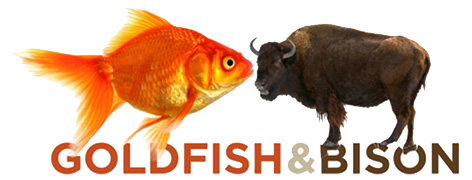 Official Goldfish & Bison logo