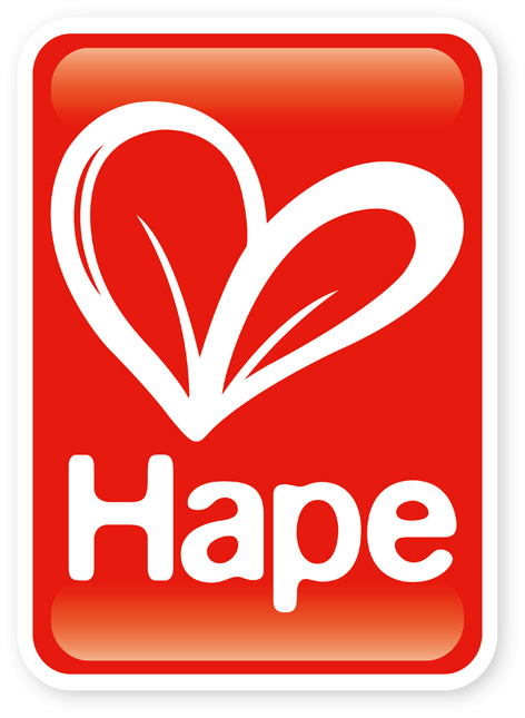 Official Hape Toys Logo width=
