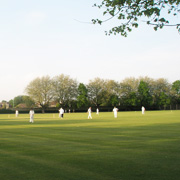 Havant Cricket Club